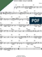311 - Flauta Dó