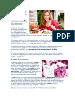 Día Mundial de la Salud Digestiva