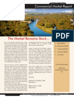 Branson Commercial Real Estate Report