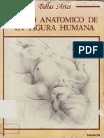 Dibujo anatómico de la figura humana - JPR504