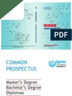 Prospectus2013-141