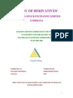 52232983 Ludhiana Stock Excahnge