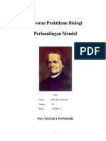 Laporan Praktikum Biologi Perbandingan Mendel