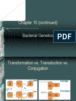 Bacteriology Chapter 10 Part i i