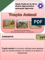 Tração Animal