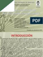 Diapositivas de Sobrepeso - Copia
