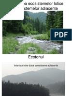 Interactiunea Ecosistemelor Lotice Cu Ecosistemelor Adiacente