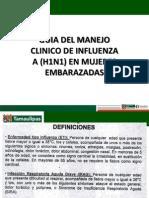 Infuenza Clinico Basico a (H1N1) (1)
