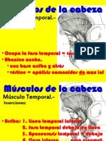 musculosdelamasticacion-130804144919-phpapp01.pptx