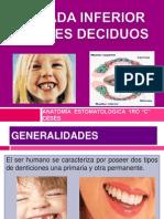 Arcada inferior dientes temporales.pptx