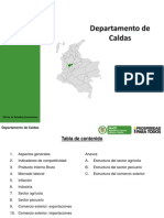 OEE__CALDAS_agosto_2013.pdf