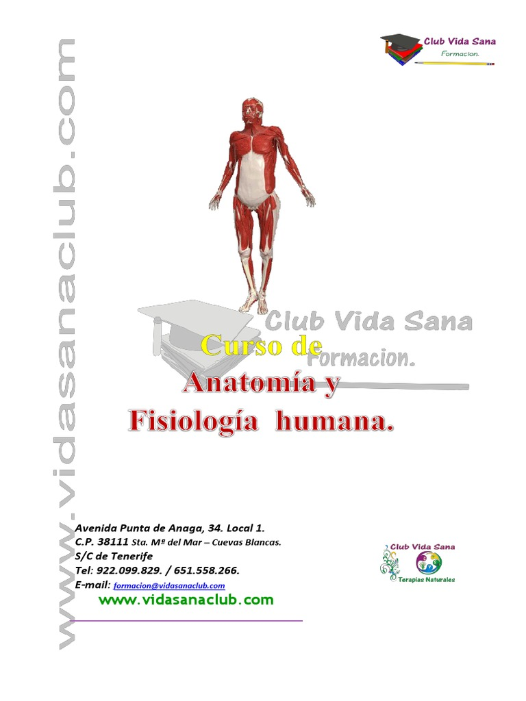 Curso Anatomia y Fisiologia Humana Online Cvs