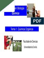 Tema 1. Quimica Organica 2013-14