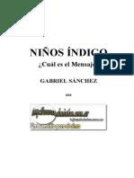 NIÑOS INDIGO - Gabriel Sánchez