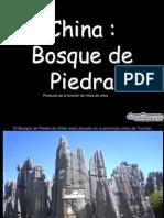 Ottavio Cautilli Bosque de Piedras