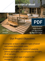 Compression of Wood (E45).ppt
