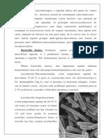Microorganismele patogene