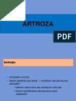 07- Artroze