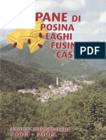 Campane di Posina - Anno 2004-2005
