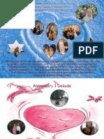 Anniversary 1 Dekade (17 Feb'04-14)