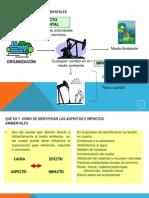 Gestion Ambiental AES