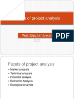 Facets of Project Analysis