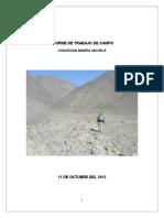 Informe de Trabajo de Campo_michelle Oct-2013
