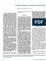 Hoff Et Al 1985 an Appraisal of Bone Marrow Biopsy in Assessment of Sick Dogs