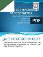 Técnicas convencionales de citogenética