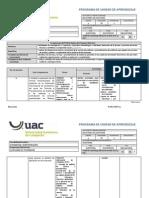 Pua Boletines de Auditoria Lc (Revisado 2013)