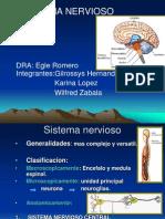 1.Sistema Nervioso