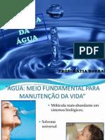 Biofisica Da Agua