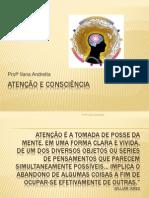 Atenção e consciência 2011