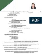 Curriculum Vitae Formato 2013