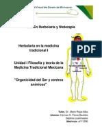 Herman_H_Flores-Foro_Organicidad_del_Ser_y_centros_anímicos