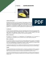 Proyecto 2009 Estudio Tecnico (1)