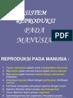 9a Sistem Reproduksi