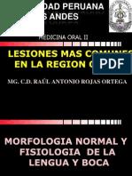 6ta.lesiones Mas Comunes en La Region Oral[1]
