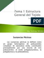 Tema 1 Estructura General Del Tejido II Br2012