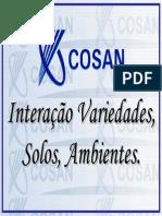 Cosan, interação, solo, ambiente.pdf