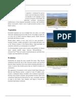 Grassland Grassland