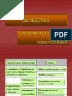 classificação vegetais PRIMEIRA AULA