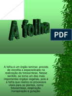 FOLHA  SÉTIMA AULA