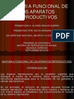 Anatomia Funcional de Los Aparatos Reproductivos
