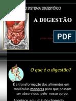 o-sistema-digestrio-ld-1226881948845830-9