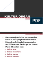 NEW KULTUR ORGAN.ppt