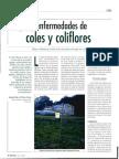 Ordas - Plagas y Enfermedades de Coles y Coliflores