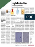 Dispersing Carbon Nanotubes