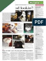Daily Freeman Pet Contest 2014