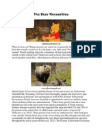 The Bear Necessities by Joshua King